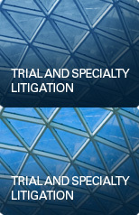 Trial and Specialty Litigation